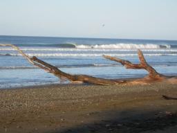 Pourquoi le Costa Rica est l'une des meilleures destinations surf au monde ?