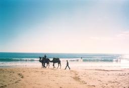 Pourquoi venir surfer au Maroc en hiver ?